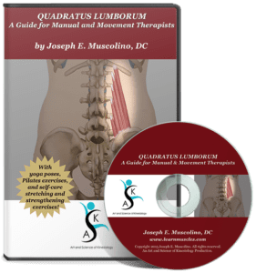 Quadrates Lumborum: A guide for Manual and Movement Therapists