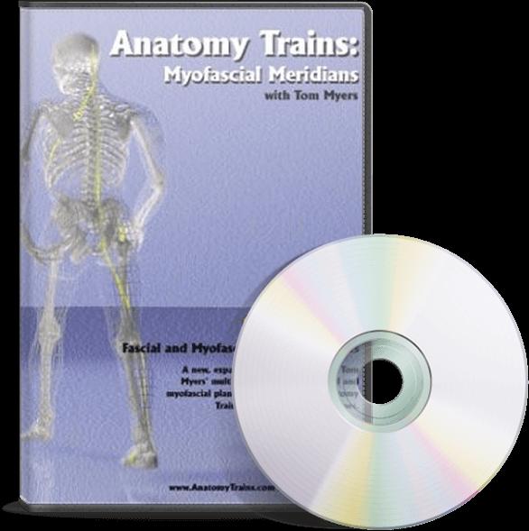 Anatomy Trains Vol 6: Spiral Line DVD