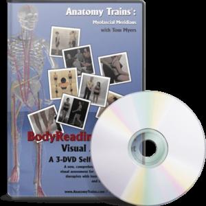 BodyReading 101: Visual Assessment